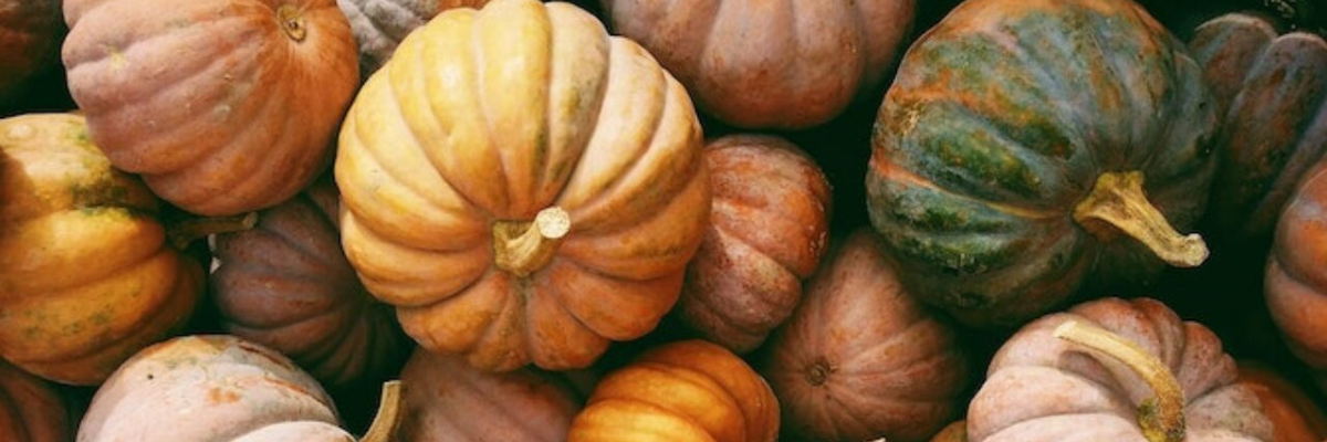 Pumpkins with Fall 2021 colours