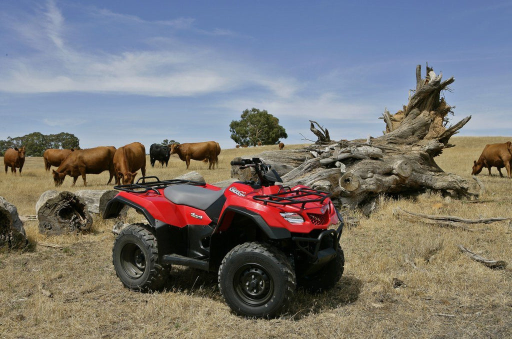 KingQuad 400ASi 4x4 - SunstateMC