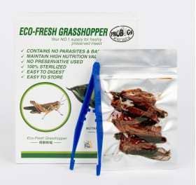ProBugs Eco-Fresh Grasshopper - Canada Ant Colony
