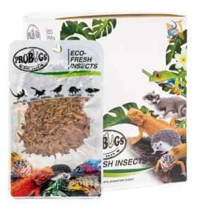 ProBugs Eco-Fresh Rice Worms - Canada Ant Colony