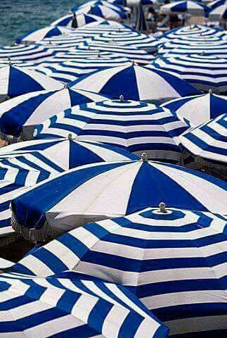 Beach umbrellas in white and classic blue