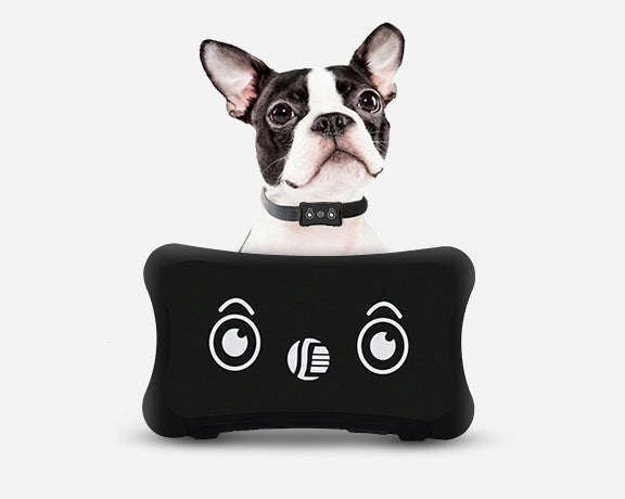 Trackmybuddy GPS Tracker Collar for Pets