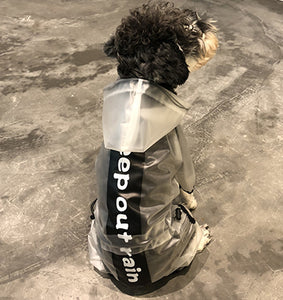 Pet Dog Raincoat Transparent