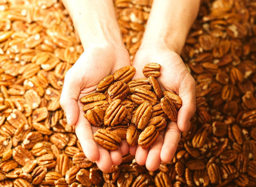 Pecans May Help Protect Us from Cancer