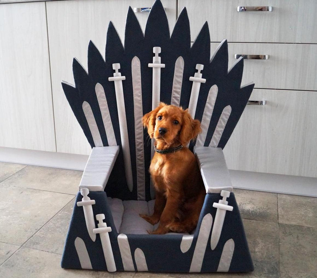 Give your pet its very own Iron Throne from Game of Thrones!