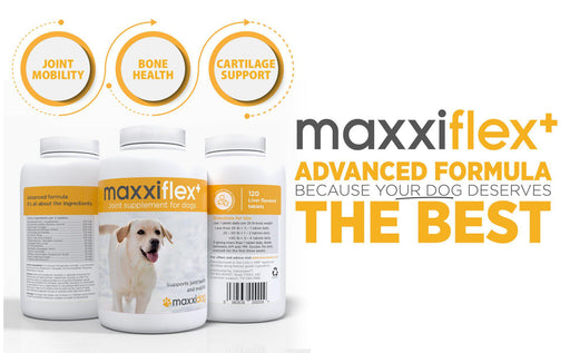 Maxxiflex+ Hip and Joint Supplement for Dogs - Land of Holistic Pets