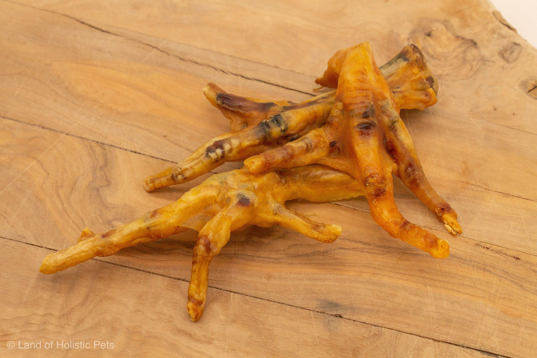Chicken Feet Dried Dog Treats - Land of Holistic Pets