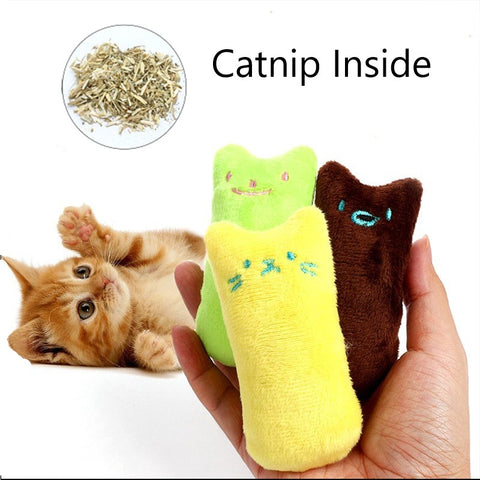 Teeth Grinding Catnip Toys + Free Shipping Today