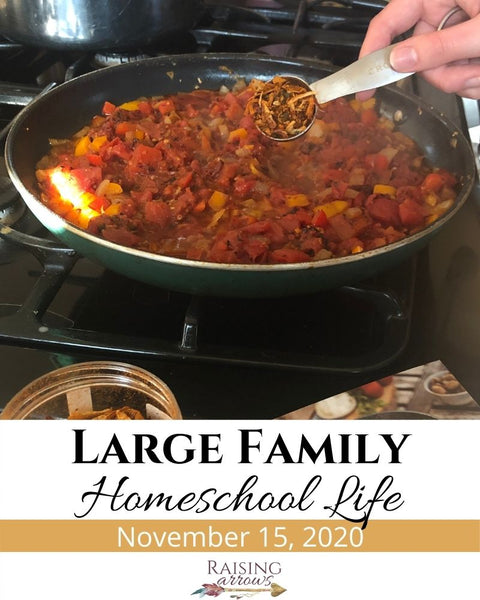 Large Family Homeschool Life – 11/15/20