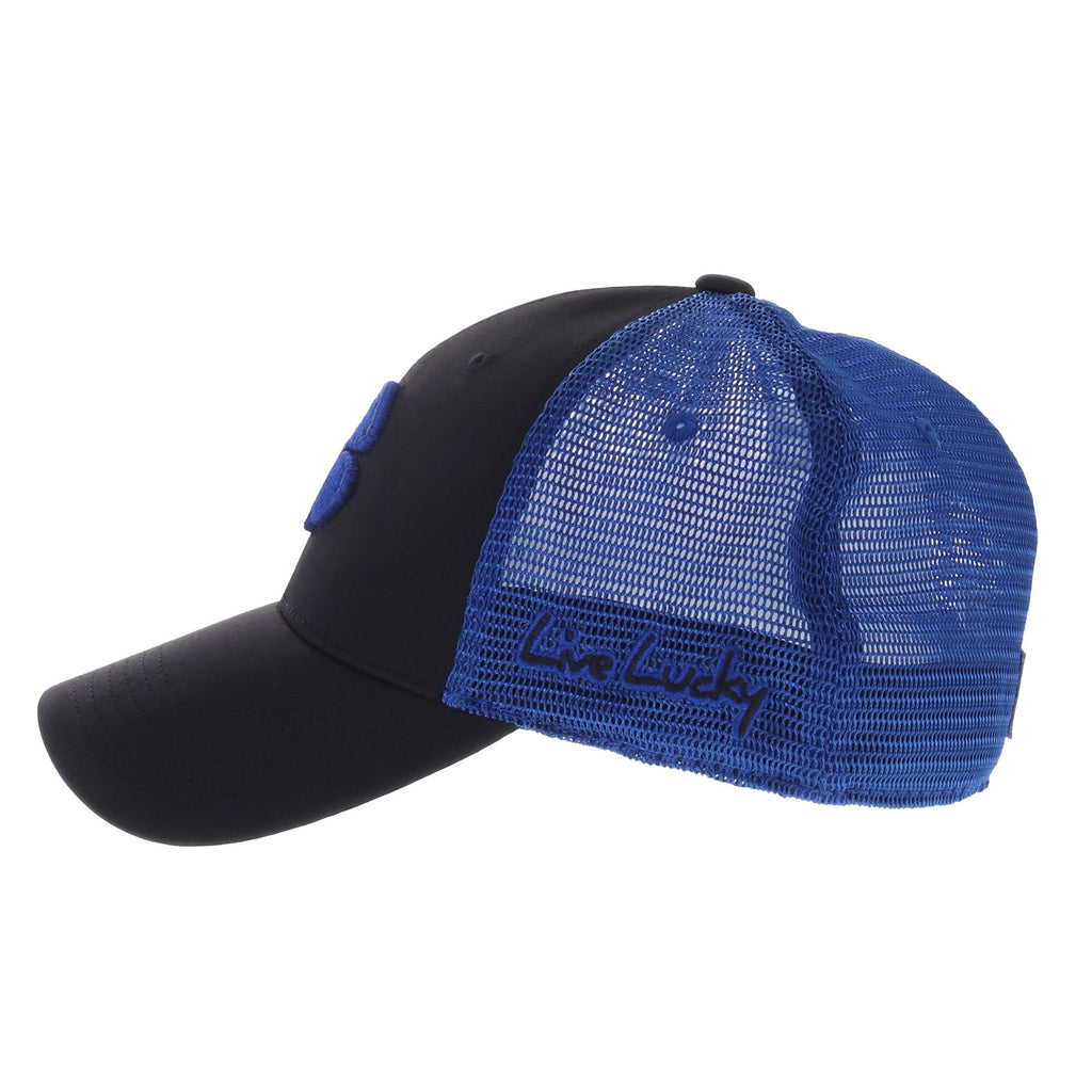 BC FITTED MESH 02