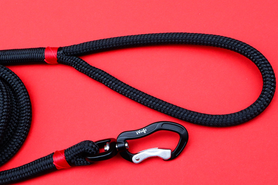 Black Rope Leash Red Accent