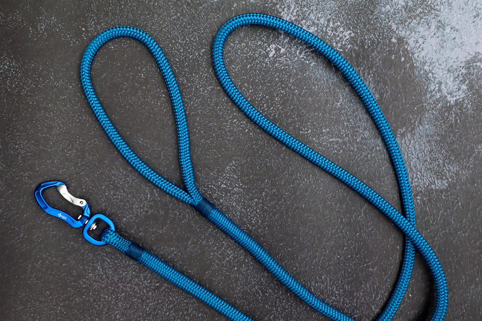 Blue Rope Leash