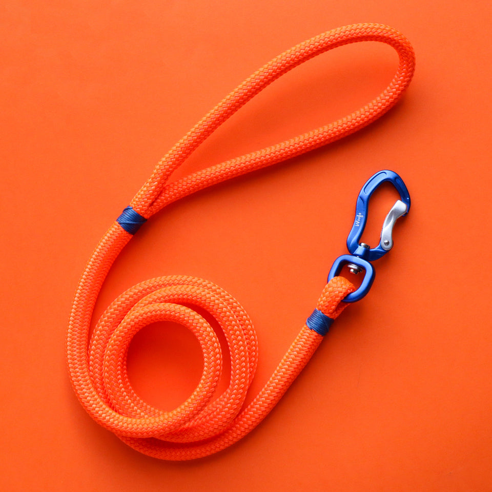 Blue & Fluro Orange Rope Leash