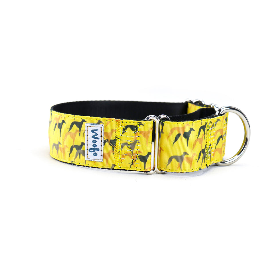 Legion Martingale Dog Collar
