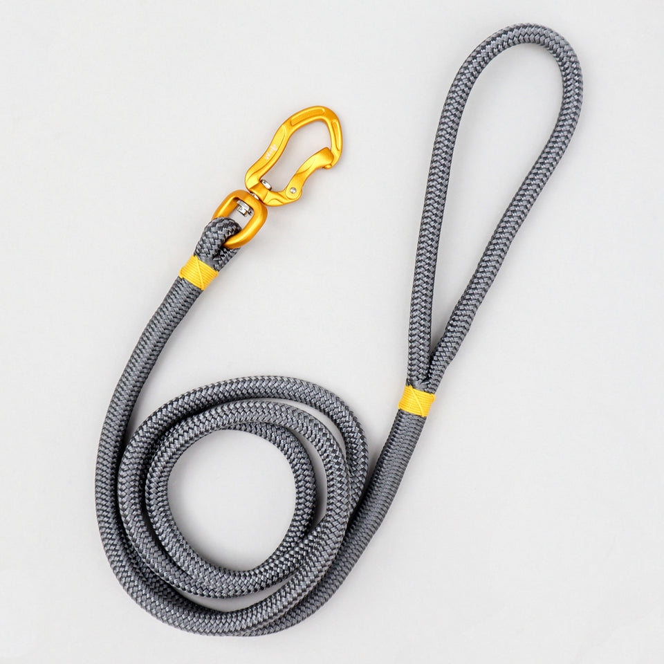 Metallic Rope Leash
