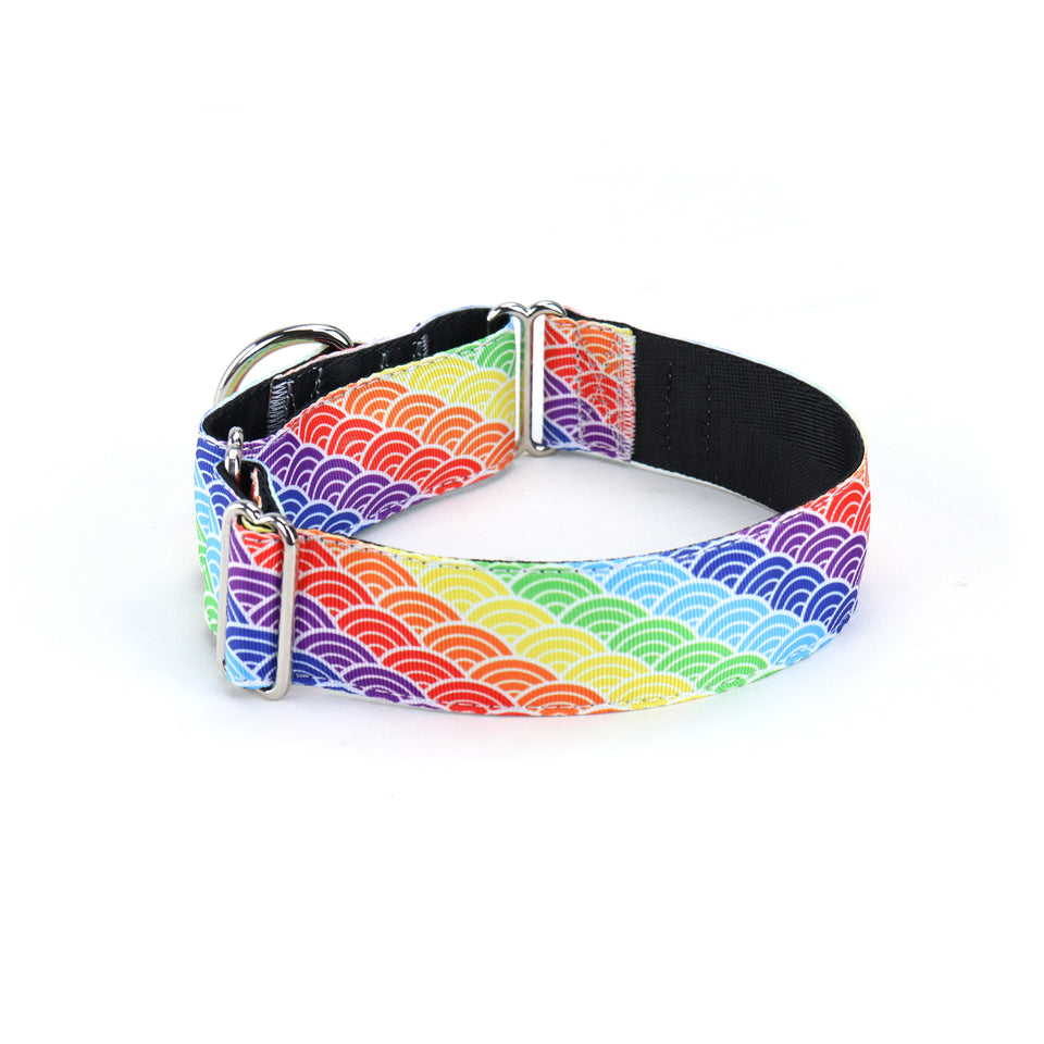 Nami Martingale Dog Collar