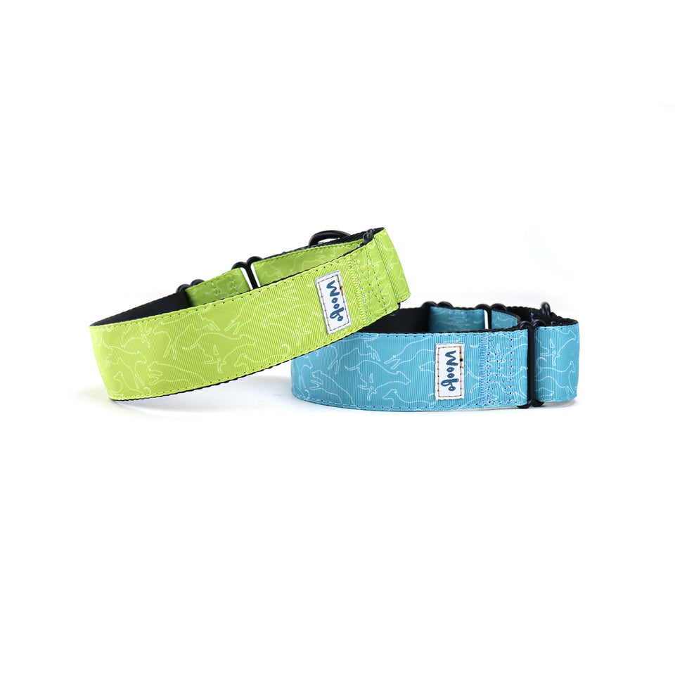 Zoomies Martingale Dog Collar-Martingale Collar-Greyhound Collars-Woofo Empawrium New Zealand