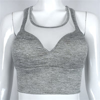 Mesh Sports Bra - Queenruler