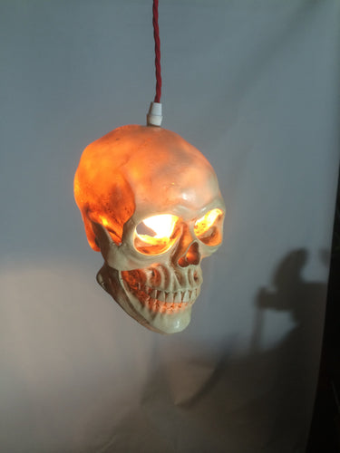 Skull Ceiling pendant light