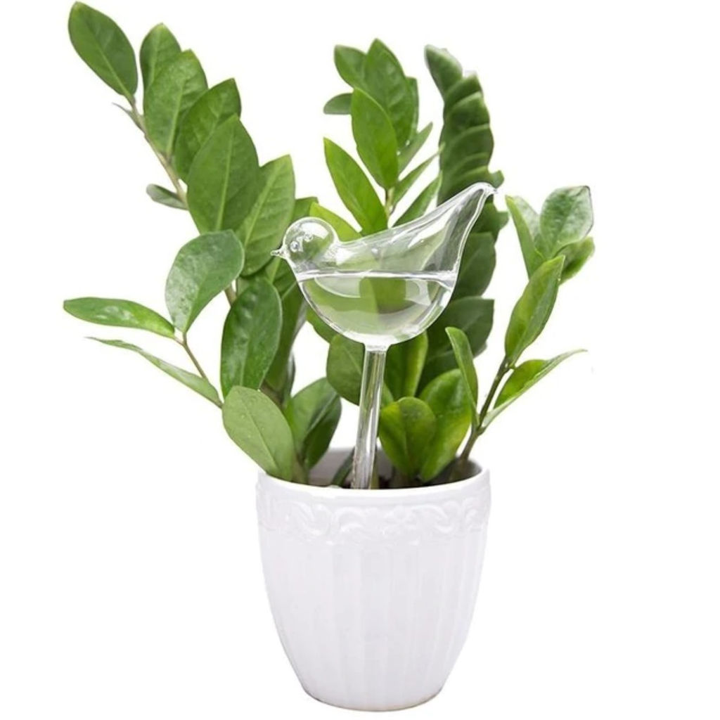 Plant Self Watering Device