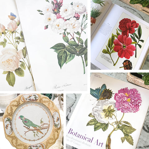 Botanical Curiosities