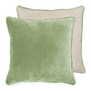 Velvet Pistachio Cushion