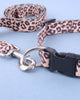 Leopard Print Collar and Lead Small