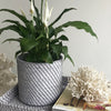 Rattan Planter Basket Medium
