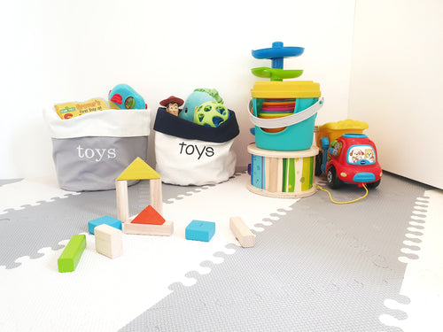 Off the Shelf Reversible Toy Bin
