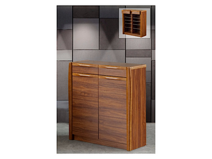 Gerry 2 Door Shoe Cabinet (DA3340)