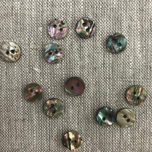 Buttons Paua 10mm (6)
