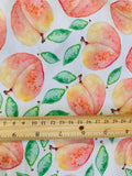 Peach, Fruits, 1 yard CL knit 260 gsm