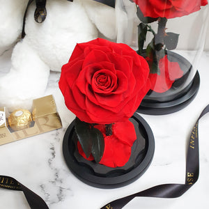 Infinite Rose | Petite Rose Dome in Red | Real Roses That Last A Year
