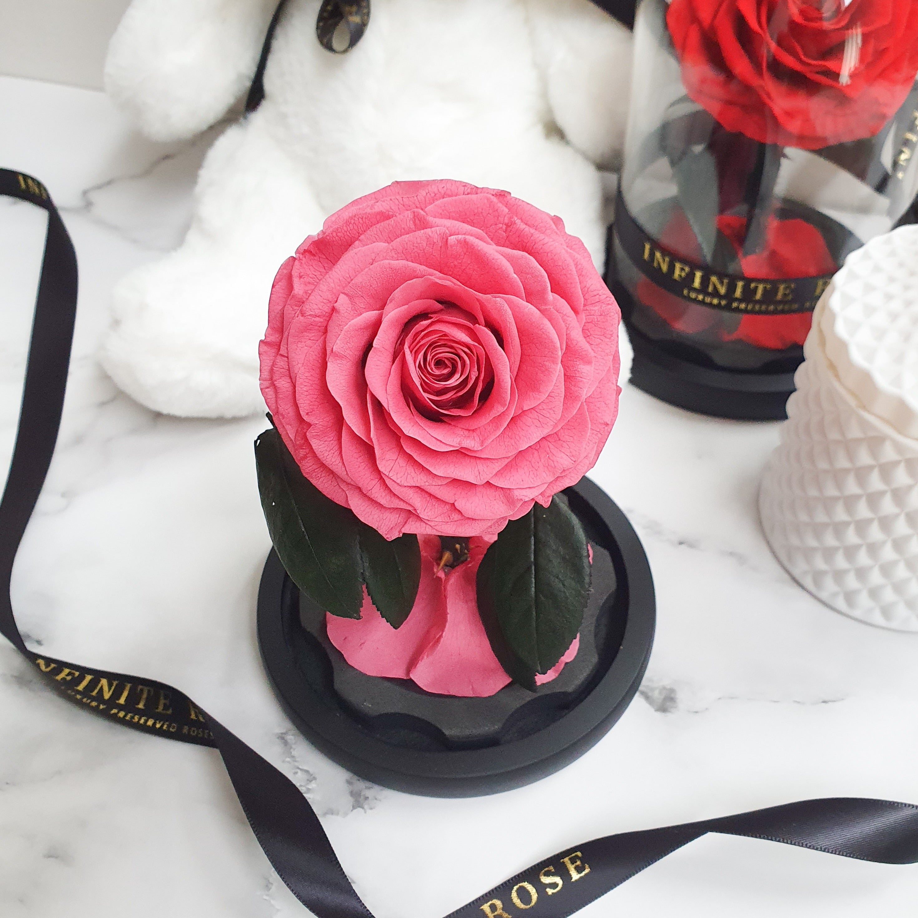 Infinite Rose | Petite Rose Dome in Pink | Real Roses That Last A Year