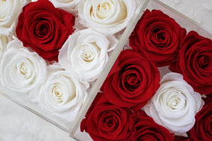 Infinite Rose | Small Acrylic Box with Drawer in White & Red | Real Roses That Last A Year