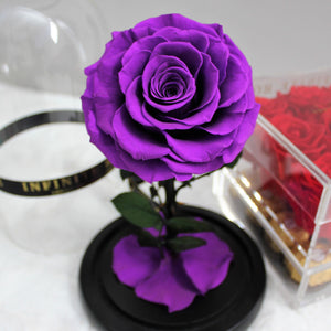 Infinite Rose | Mini Rose Dome in Purple | Roses That Last A Year