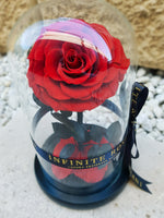 Infinite Rose | Mini Rose Dome in Red | Roses That Last A Year