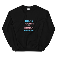 Load image into Gallery viewer, TRANS RIGHTS ARE HUMAN RIGHTS T-shirt (black)