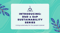 Introducing: DbD x SnP Sustainability Series