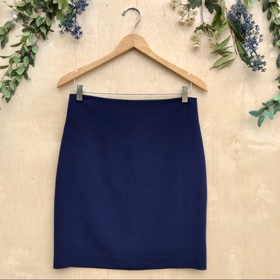 Artelier Classic Blue Pencil Skirt