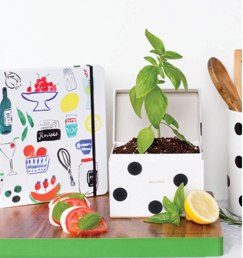Kate Spade New York - Recipe Box Deco Dot