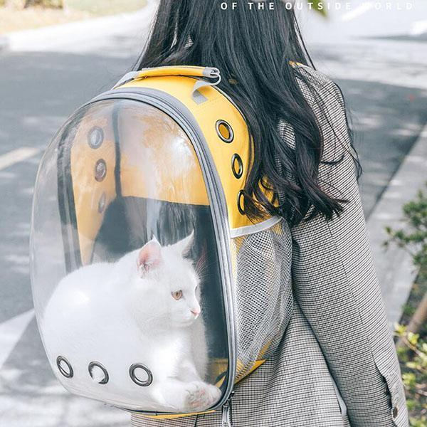 Space Aat Pet Bag - mftale