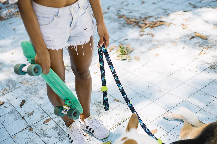10% OFF ⏰ ZEE.DOG<br>Area 51 Dog Leash