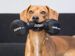 BARK<br>Pupping Iron Dumbbell<br>Dog Plush Toy