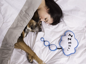 BARK<br>You Snooze, You Chews<br>Dog Plush Toy