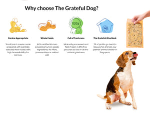 5% OFF ⏰ THE GRATEFUL DOG<br>Grain Free Gently Cooked Ready Meals<br>Frozen Fresh Human Grade Dog Food
