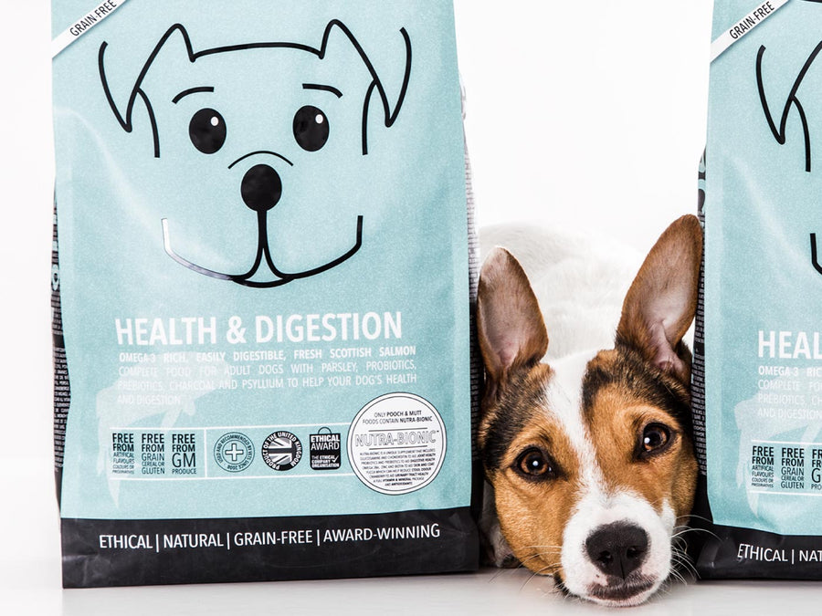 15% OFF ⏰ POOCH & MUTT<br>GRAIN FREE Health & Digestion Salmon<br>Dry Dog Food