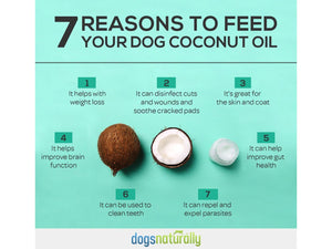 DR. MERCOLA<br>Organic Raw Extra Virgin<br>Cold Pressed Coconut Oil<br>Brain, Gut, Skin, Itch, Wound<br>Dog/Cat Supplement/Topical
