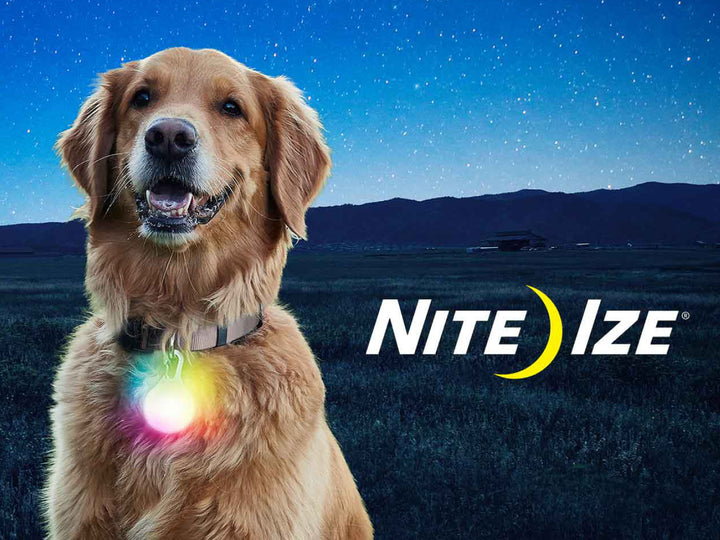 NITE IZE<br>SpotLit XL Disc-O Select<br>Rechargeable LED Collar Light