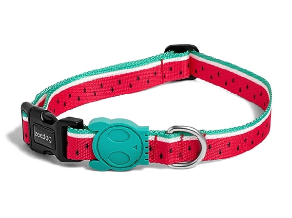 10% OFF ⏰ ZEE.DOG<br>Lola Dog Collar